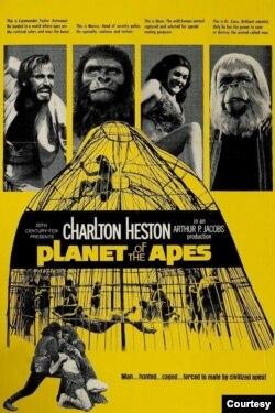 فلم کی کامیابی کا اندازہ اس بات سے لگایا جا سکتا ہے کہ 70 کی دہائی میں اس کے چار سیکویلز ریلیز ہوئے تھے۔