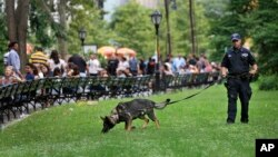 A bomb-sniffing dog works near the scene of an explosion in New York's Central Park, July 3, 2016. A firework exploded when a 19-year-old unwittingly stepped on it Sunday.