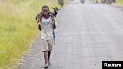 A boy carries a goat along a road near the town of Sake, about 27 kilometers west of Goma, DRC, November 27, 2012.