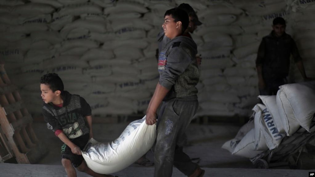 Người Palestin nhận thực phẩm cứu trợ của UNRWA tại một nhà kho của LHQ ở trại tị nạn Shati thuộc thành phố Gaza ngày 14/1/2018.
