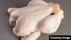 The chicken imports are said to be preserved with chemicals designed for embalming human remains. (File Photo/Courtesy Image)