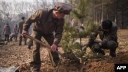 지난 3월 평양에서 식수절을 맞아 주민들이 나무를 심고 있다.
