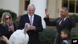 美國總統奧巴馬赦免火雞