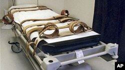 Florida's lethal injection gurney is shown in an undated photo taken in the redesigned death chamber. An Indian firm is set to restrict the sale of 'lethal injection' drugs to the United States. (File Photo)