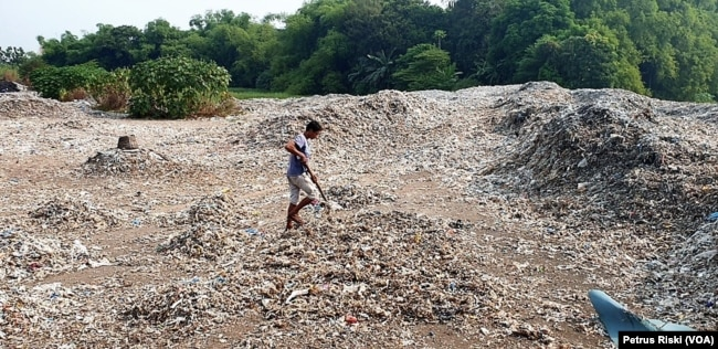 Seorang warga sedang memilah sampah plastik di lahan bekas sawah di Desa Bangun, Kabupaten Mojokerto, 19 Juni 2019. (Foto: Petrus Riski/VOA)