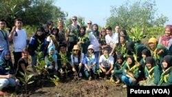 Mahasiswa program pertukaran ikut menanam mangrove di hutan mangrove Wonorejo Surabaya, untuk memperingati Hari Air Sedunia, Sabtu 21 Maret 2015 (Foto: VOA/Petrus).