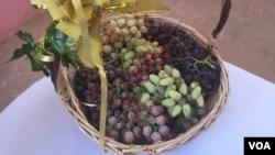 هرات یکی از شهر عمدۀ تولید کنندۀ حاصلات انگور در افغانستان است