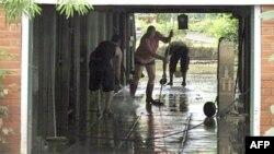 Dân trong thành phố Brisbane của Australia quét dọn bùn lầy sau trận lụt.