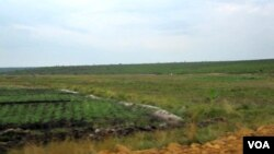 Arrozais no Rio Longa, província de Kuando Kubango