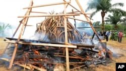 FILE -Elephant ivory tusks are burned on a pyre with thousands of pieces of carved ivory, equivalent to ivory culled from roughly 850 elephants, in Libreville, Gabon. Many of the elephants were slaughtered in Tanzania.
