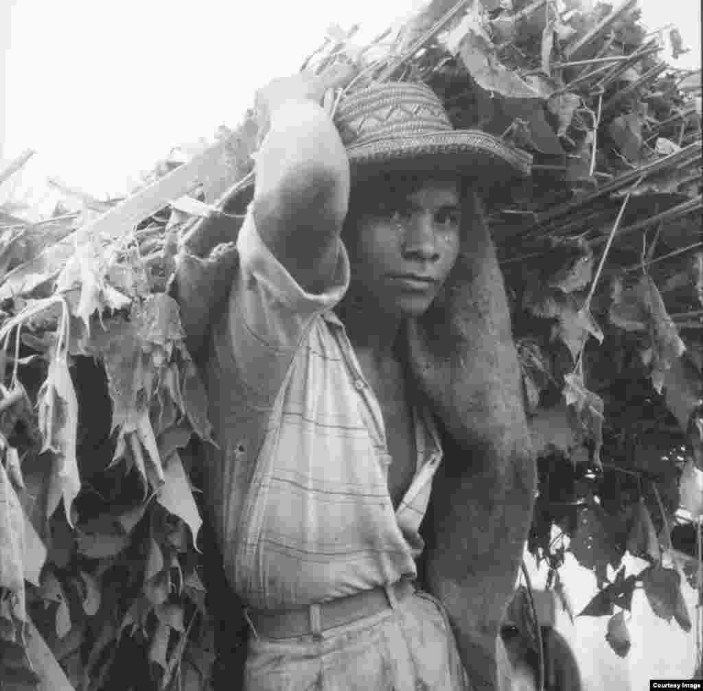 ونزوئلا، 1960
