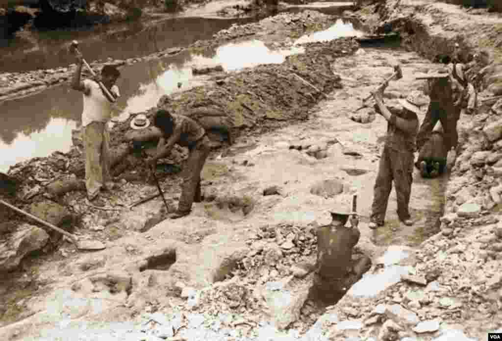 Para pekerja di parit-parit penggalian masif paleontolog Roland T. Bird pada 1940. (R.T. Bird dari koleksi Laboratorium Paleontologi Vertebrata, University of Texas di Austin)
