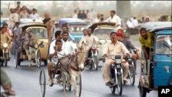 کراچی میں گدھوں کی مصروفیات