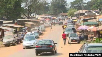 cameroon reopens border with nigeria