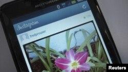Foto bunga yang diambil dengan aplikasi berbagi foto Instagram. (Reuters/Fred Prouser)