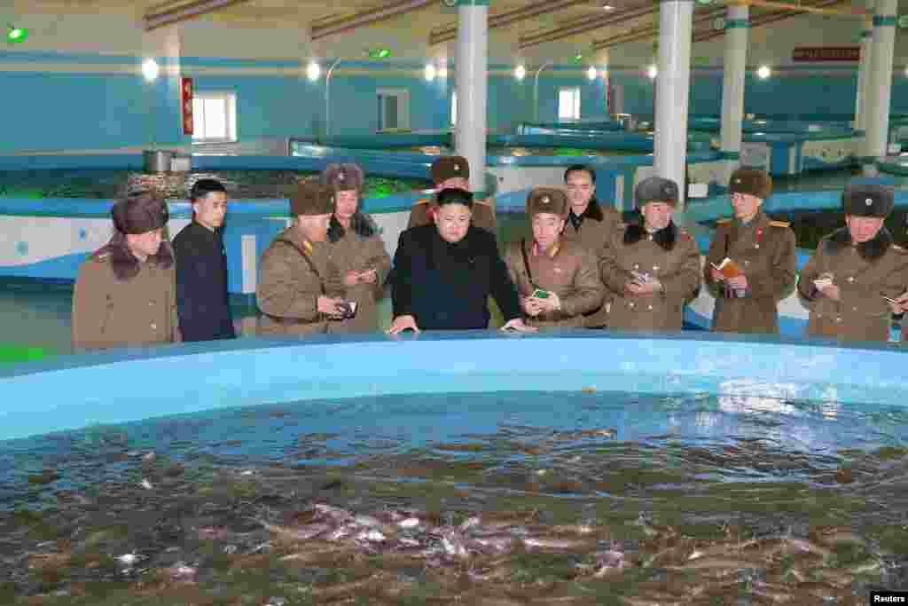 북한 김정은 국무위원장이 최근 현대화 공사를 거친 삼천메기공장을 시찰했다고, 관영 조선중앙통신이 21일 보도했다. 김 위원장이 수행 인사들과 함께 양어 시설을 둘러보고 있다.