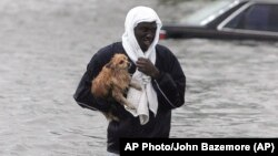 AP Photo/John Bazemore (AP)