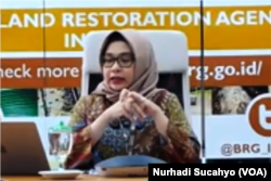 Tangkapan layar Myrna A Safitri dari Badan Restorasi Gambut. (Foto: VOA/Nurhadi Sucahyo)