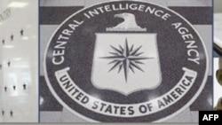 Bilgisayar Korsanları CIA'nın İnternet Sitesini Çökertti