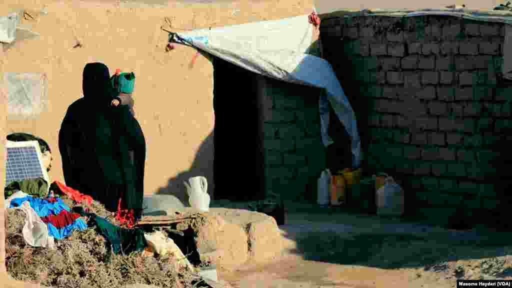 کاهش شدید بارندگی و برف در اکثر بخشهای افغانستان سبب خشکسالی شدید شده که افزون بر وارد کردن زیان شدید به زراعت، سبب تلف شدن شمار زیاد مواشی نیز شده است