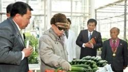 آمريکا ارسال کمک غذايی به کره شمالی را بررسی می کند