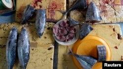 Theo công văn của Thứ trưởng Bộ Nông nghiệp Phát triển Nông thôn, người dân không được chế biến, tiêu thụ các loại hải sản chết trôi vào bờ hoặc hải sản đánh bắt cách bờ 20 hải lý tại các tỉnh bị ảnh hưởng gồm Hà Tĩnh, Quảng Bình, Quảng Trị, và Thừa Thiên Huế.