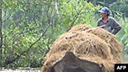 ADB hỗ trợ dự án nước sạch, vệ sinh môi trường của VN