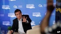 រូបឯកសារ៖ លោក Ted Cruz សមាជិកព្រឹទ្ធសភានៃគណបក្សសាធារណរដ្ឋ តស៊ូមតិជាមួយលោក Gary Marsh អំពីសេវាថែទាំសុខភាព កាលពីថ្ងៃទី៦ ខែកក្កដា ឆ្នាំ២០១៧។ (AP Photo/Eric Gay)
