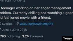 Greta Thunberg respondió al tuit del presidente Donald Trump con sarcasmo, adaptando sus palabras a la descripción de su perfil de Twitter.