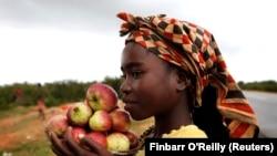 Uma menina vende maçãs nas ruas do Lubango (Foto de Arquivo)