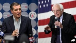 ted cruz vs sanders