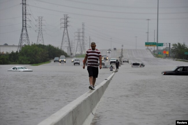A stranded motorist escapes floodwaters on Interstate 225 after Hurricane Harvey inundated the Texas Gulf coast with rain causing mass flooding, in Houston, Texas, Aug. 27, 2017.