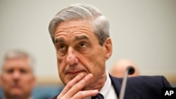 The Politics of the Mueller Report