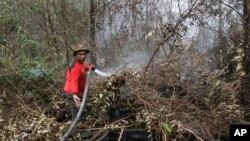 Seorang petugas damkar berusaha memadamkan kebakaran hutan di Pekanbaru, provinsi Riau (foto: dok).