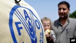 D'après la FAO, la Syrie, l'Irak, le Yémen, le Soudan et la Libye sont menacés de famine.