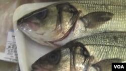 Menurut CDC, separuh dari 39 wabah keracunan yang dilaporkan terjadi di Amerika dalam enam tahun terakhir disebabkan oleh impor makanan laut.