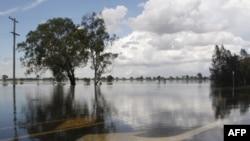Avustralya'da Sel Felaketi