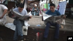 Egyptian protesters read newspapers under a tent in Tahrir Square.