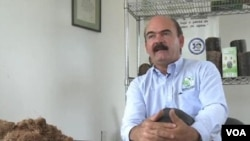 墨西哥哈利斯科州的碳多元公司主管弗朗西斯
