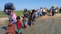 ႐ိုဟင္ဂ်ာေတြကို ဆြဲေဆာင္ေနတဲ့ လူေမွာင္ခိုေတြ Bangladesh ဖမ္းဆီး