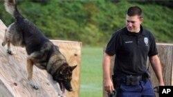 Foto yang dikeluarkan oleh Kantor Polisi Hattiesburg ini menunjukkan polisi Benjamin Deen ikut dalam pelatihan K-9 di akademi polisi di Hattiesburg, Mississippi. Petugs polisi Deen dan Liquori Tate tewas ditembak hari Sabtu malam, 9 Mei 2015 di Hattiesburg, Mississippi.