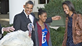 "President Barack Obama, with daughters Sasha (l) and Malia carries on the Thanksgiving tradition of saving a turkey from the dinner table with a ""presidential pardon,"" Nov. 21, 2012, in the Rose Garden of the White House."