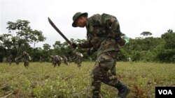 El vice ministro responsable de la lucha antidroga Felipe Cáceres, dijo que EE.UU. va jugar un rol importante de cooperación.