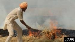 نئی دہلی حکومت کا کہنا ہے کہ ہریانہ اور پنجاب میں فصلوں کی باقیات جلانے کے باعث آلودگی بڑھ رہی ہے۔