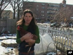 Washington resident Amanda Cundiff consumes fresh eggs from the chickens she raises in her backyard.