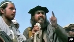 Pakistani militants