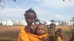 UNHCR Buufata Baqattootaa Solooloo Jiru Cufuu Beeksise