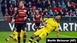 Pierre-Emerick Aubameyang de Dortmund tombe lors du match de football de la Bundesliga allemande entre le Bayer Leverkusen et le Borussia Dortmund à Leverkusen, Allemagne, 21 février 2016.