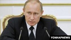 블라디미르 푸틴 러시아 대통령(자료사진)