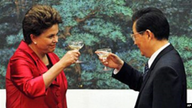 Brazilian President Dilma Rousseff (l) toasts with China's President Hu Jintao after a signing ceremony held at the Great Hall of the People in Beijing, April 12, 2011